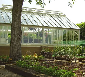 glasshouse and raised beds